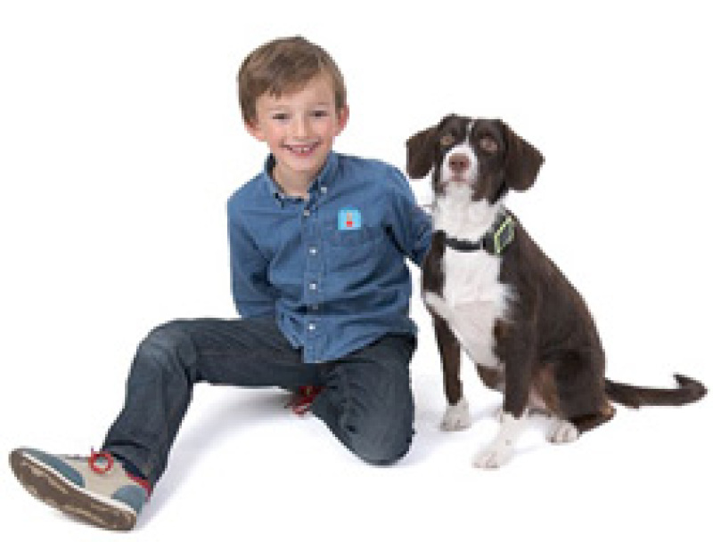 Illustration : Weenect Pets : quand SFR propose un collier GPS pour chien et chat